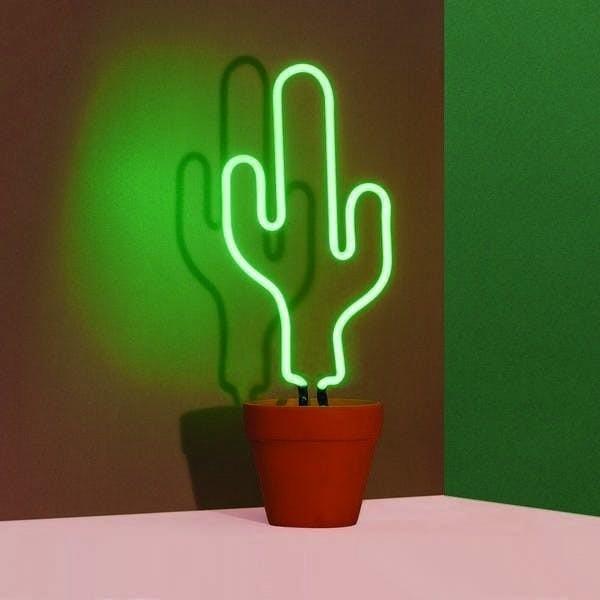 neon-cactus-4-z